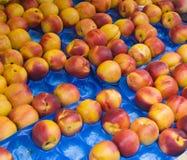 nektaryny rynkowych Obraz Royalty Free