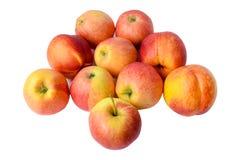 Nektaryny z jabłkami Obrazy Royalty Free
