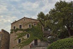 Nel centro storico di Girona Vecchia casa, attorcigliata con la l verde Fotografia Stock