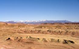 Nel deserto Fotografie Stock