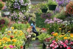 Nel giardino Fotografia Stock Libera da Diritti