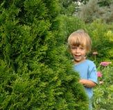Nel giardino Fotografie Stock Libere da Diritti