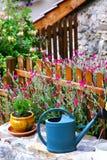 Nel giardino Fotografia Stock