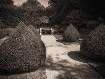 Nel giardino d'annata Fotografia Stock Libera da Diritti