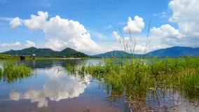 Nel lago Fotografia Stock Libera da Diritti
