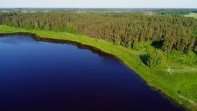 Nel lago Malenets su una mattina di Sunny June Mikhailovskoe, montagne di Pushkin stock footage