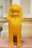 Nel leone dorato Immagine Stock
