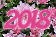2018 nel rosa Fotografia Stock