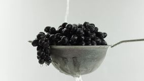 Nel video che vediamo l'uva in un setaccio, l'acqua inizia caduta dalla cima in un getto in mezzo alle video fermate dell'acqua video d archivio