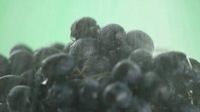 Nel video vediamo l'uva, l'acqua versiamo dalla cima poi ci fermiamo con le gocce, il primo piano, fondo verde archivi video