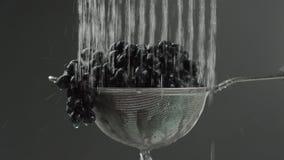 Nel video vediamo l'uva in un setaccio, caduta dell'acqua dalla cima in singoli getti verso la metà di video cadute dell'acqua stock footage
