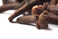 Nelken-Makrosyzygium aromaticum Lizenzfreies Stockfoto
