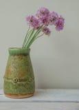 Nelks pequenos em um vaso, ainda-vida Imagens de Stock Royalty Free