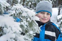 Nell'inverno, abetaia innevata un ragazzo che sta nella neve Immagine Stock