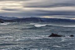Nella costa Fotografia Stock Libera da Diritti