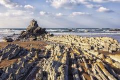 Nella costa Fotografie Stock Libere da Diritti