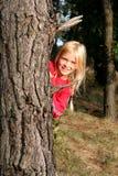 Nella foresta Fotografie Stock