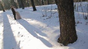 Nella foresta dell'inverno, un'ombra lunga dal sole cade dalle coppie archivi video