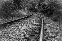 Nella linea curve fotografia stock