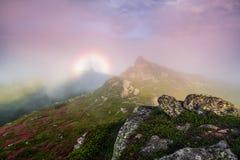 Nella nebbia rosa c'? un alone dell'arcobaleno dello spettro fantastico di Brocken di fenomeni naturali Prato inglese con il rodo fotografia stock