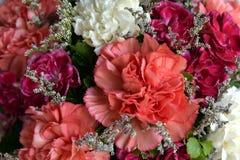 Nella raccolta di molti mazzi floreali; colore; variopinto; bellezza Fotografie Stock Libere da Diritti