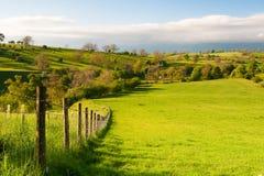 Nella sosta nazionale delle vallate del Yorkshire Fotografia Stock Libera da Diritti