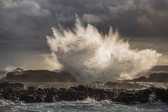 Nella tempesta Fotografia Stock Libera da Diritti