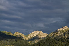Nelle alpi di Lechtal Immagine Stock