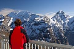 Nelle alpi svizzere, la Svizzera Immagini Stock Libere da Diritti