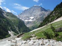 Nelle montagne Fotografia Stock