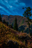 Nelle montagne Fotografie Stock