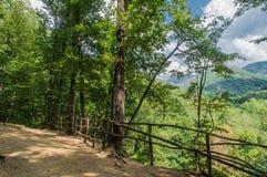 Nelle montagne del Caucasu Fotografie Stock
