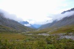 Nelle montagne del Sayan orientale Immagini Stock