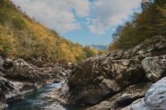 Nelle montagne, nella foresta, un giorno soleggiato luminoso fotografia stock libera da diritti