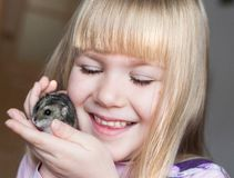 Nelli. Face, hamster! stock photos