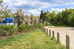 Nellie McClung Park,Edmonton Stock Photos