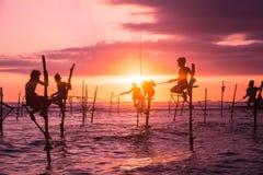 Nello Sri Lanka, un pescatore locale sta pescando nello stile unico nella sera Fotografia Stock