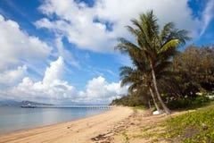 Nelly Bay Jetty och palmträd, magnetisk ö Townsville Arkivbild