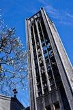 Nelson Anglican Cathedral, Nelson, Nuova Zelanda fotografia stock