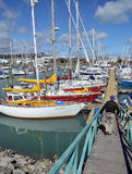 Nelson Boat Marina, Nouvelle-Zélande Photos stock