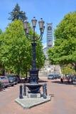 Nelson Cathedral et rue de Trafalgar - verticale Images libres de droits