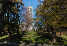 Nelson cathedral with trees in parkland Stock Image