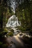 Nelson Falls, een cascadewaterval, in de Unesco-Wereld H wordt gevestigd dat stock foto's