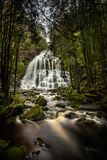 Nelson Falls, ein Kaskadenwasserfall, gelegen in der UNESCO-Welt H stockfotos