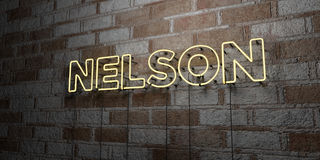 NELSON - Glowing Neon Sign on stonework wall - 3D rendered royalty free stock illustration Stock Images