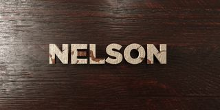 Nelson - grungy wooden headline on Maple  - 3D rendered royalty free stock image Royalty Free Stock Photos