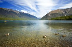 Nelson Lakes Landscape Stock Images