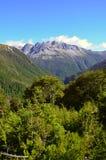 Nelson Lakes National, Neuseeland stockfotografie