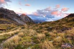 Nelson Lakes, Nieuw Zeeland Stock Foto's