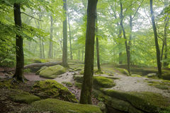 Nelson' Ledges State Park Royalty Free Stock Photography